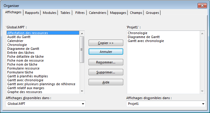 MS Project Organisateur